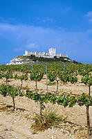 Spain, Castilla y Leon province. Penafiel castle, completed in the 15th century, built on a limestone hill, overlooks vineyards in the Spanish countryside north of Madrid. Penafiel Castilla y Leon Spa
