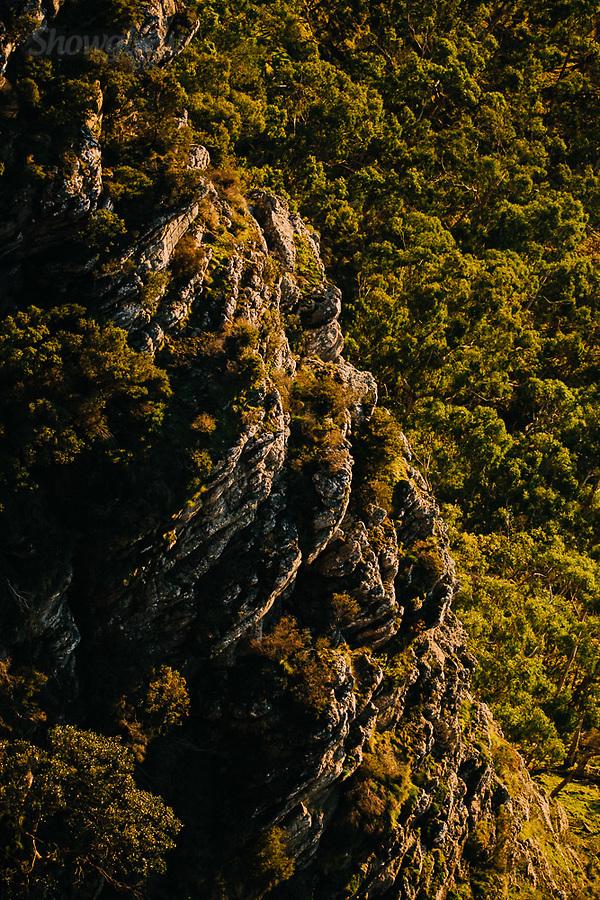 Image Ref: CA884<br /> Location: Dunkeld<br /> Date of Shot: 07.08.19