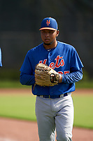 GCL Mets pitcher Jhonfran Escalona (25) before a Gulf Coast League game against the GCL Astros on August 10, 2019 at FITTEAM Ballpark of the Palm Beaches Training Complex in Palm Beach, Florida.  GCL Astros defeated the GCL Mets 8-6.  (Mike Janes/Four Seam Images)