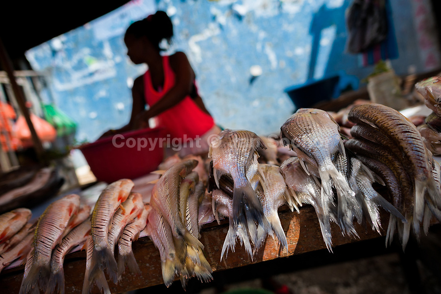An Afro-Colombian woman sells fresh fish in the market of Bazurto in Cartagena, Colombia, 19 December 2017. Far from the touristy places in the walled city, a colorful, vibrant labyrinth of Cartagena's biggest open-air market sprawls to the Caribbean seashore. Here, in the dark and narrow alleys, full of scrappy stalls selling fruit, vegetables and herbs, meat and raw fish, with smelly garbage on the floor and loud reggaeton music in the air, the African roots of Colombia are manifested.