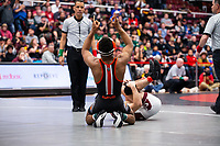 STANFORD, CA - March 7, 2020: Devan Turner of Oregon State University celebrates during the 2020 Pac-12 Wrestling Championships at Maples Pavilion.