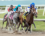 HALLANDALE BEACH, FL - FEB 03: Take Charge Paula #4 wins The $200,000 Forward Gal Stakes (G3) for trainer Kiaran P. McLaughlin with jockey Paco Lopez in the irons at Gulfstream Park on February 3, 2018 in Hallandale Beach, FL. (Photo by Bob Aaron/Eclipse Sportswire/Getty Images)
