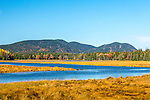 Bass Harbor Marsh in Acadia National Park, Maine, USA