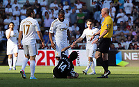 Pictured: (L-R) Itay Shechter, Kemy Agustien, Giorgos Karagounis, Leon Britton, L. Mason (referee).<br /> Sunday 19 May 2013<br /> Re: Barclay's Premier League, Swansea City FC v Fulham at the Liberty Stadium, south Wales.