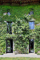 The exterior of a stone house covered with a mass of foliage from climbing plants clinging to the wall.