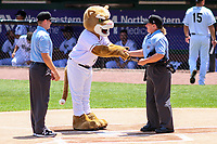 Kane County Cougars mascot Ozzie shakes hands with umpire Jennifer Pawol prior to a Midwest League game against the Quad Cities River Bandits on July 1, 2018 at Northwestern Medicine Field in Geneva, Illinois. Quad Cities defeated Kane County 3-2. (Brad Krause/Four Seam Images)