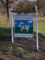 OLYMPUS DIGITAL CAMERA Rustlewood, the Johnson family dairy farm in Kittery, Maine, will soon be protected with a conservation easement. Photograph by Peter E. Randall.