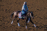 November 3, 2020: Factor This, trained by trainer Brad Cox, exercises in preparation for the Breeders' Cup Mile at Keeneland Racetrack in Lexington, Kentucky on November 3, 2020. John Voorhees/Eclipse Sportswire/Breeders Cup/CSM