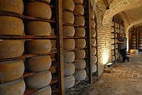 - aging of Parmigiano Reggiano cheese at the agricultural company Spigaroli<br /> <br /> - stagionatura del formaggio Parmigiano Reggiano presso l'azienda agricola Spigaroli