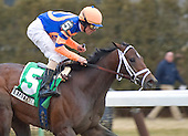 Stay Thirsty and Ramon Dominguez are all alone at the wire in Saturday's Gotham Stakes at Aqueduct.