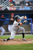 West Virginia Black Bears catcher Arden Pabst (52) lays down a bunt during a game against the Batavia Muckdogs on June 28, 2016 at Dwyer Stadium in Batavia, New York.  Batavia defeated West Virginia 3-1.  (Mike Janes/Four Seam Images)