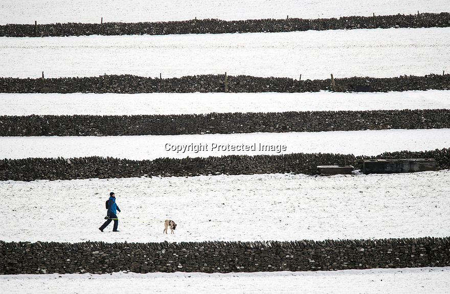 17/01/18<br /> <br /> Mark Wilkinson, walks his dog, Akira, between dry stone walls after overnight snowfall in the Derbyshire Peak District near Castleton..<br /> <br /> All Rights Reserved F Stop Press Ltd. +44 (0)1335 344240 +44 (0)7765 242650  www.fstoppress.com