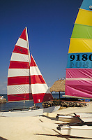 Colorful sunfish sailboats on the beach. sailboat, boat, boats. Florida, Florida Keys.