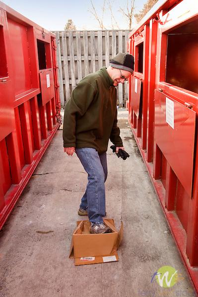 Boy Scout recycling center, Northway Road, Loyalsock, PA. Man crushing cardboard box.