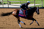 November 2, 2020: Aunt Pearl, trained by trainer Brad Cox, exercises in preparation for the Breeders' Cup Juvenile Fillies Turf at Keeneland Racetrack in Lexington, Kentucky on November 2, 2020. Scott Serio/Eclipse Sportswire/Breeders Cup/CSM