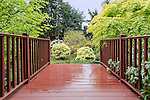 Empty, wooden, front porch of suburban home in Washington State.  Thick flora and landscape.