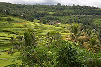 Jatiluwih, Bali, Indonesia.  Terraced Rice Paddies.  Village in the Distance.