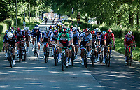 in the race finale the big guns come out to play<br /> <br /> 17th Benelux Tour 2021<br /> Stage 5 from Riemst to Bilzen (BEL/192km)<br /> <br /> ©kramon