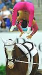 7 October 2010: Cristina Vittoria Balcerek (ITA) competes during Vaulting in the World Equestrian Games in Lexington, Kentucky