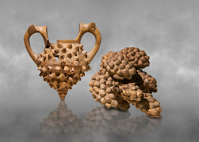 Hittite terra cotta two handled vessel and a ritual vessel in the shape of a bunch of grapes - 16th century BC - Hattusa ( Bogazkoy ) - Museum of Anatolian Civilisations, Ankara, Turkey . Against grey art background