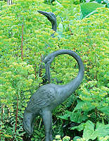 Spurge/Milkweed (Euphorbiax martinii) with iron herons. VanDusen Botanical Garden. Vancouver, BC