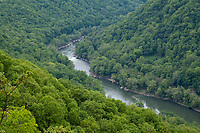 New River Gorge National Park, West Virginia.  View of New River Gorge from Endless Wall Trail.