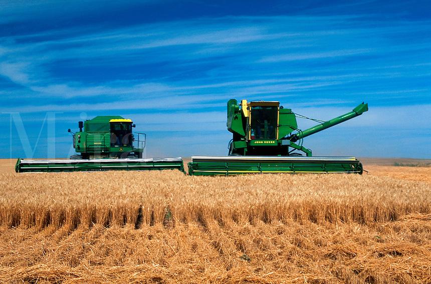 Combines harvesting wheat in Colorado.