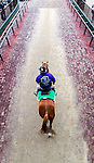 ELMONT, NY - OCTOBER 08: An outrider walking to the track, during post parade for the 69th Running of The Frizette, on Jockey Club Gold Cup Day at Belmont Park on October 8, 2016 in Elmont, New York. (Photo by Douglas DeFelice/Eclipse Sportswire/Getty Images)