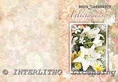 Alfredo, FLOWERS, paintings, BRTOCH40583CP,#F# Blumen, flores, illustrations, pinturas