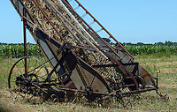 THIS AMISH THRASHER, A TECHNOLOGY FROM THE 1800 STILL ALIVE AND ACTIVE IN THE AMISH COUNTRYSIDE IN MISSOURI.