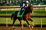 April 27, 2021: Highly Motivated gallops in preparation for the Kentucky Derby at Churchill Downs in Louisville, Kentucky on April 27, 2021. EversEclipse Sportswire/CSM