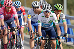 The peloton including White Jersey Enric Mas (ESP) Movistar Team during Stage 11 of the Vuelta Espana 2020 running 170km from Villaviciosa to Alto de la Farrapona, Spain. 31st October 2020.    <br /> Picture: Luis Angel Gomez/PhotoSportGomez | Cyclefile<br /> <br /> All photos usage must carry mandatory copyright credit (© Cyclefile | Luis Angel Gomez/PhotoSportGomez)