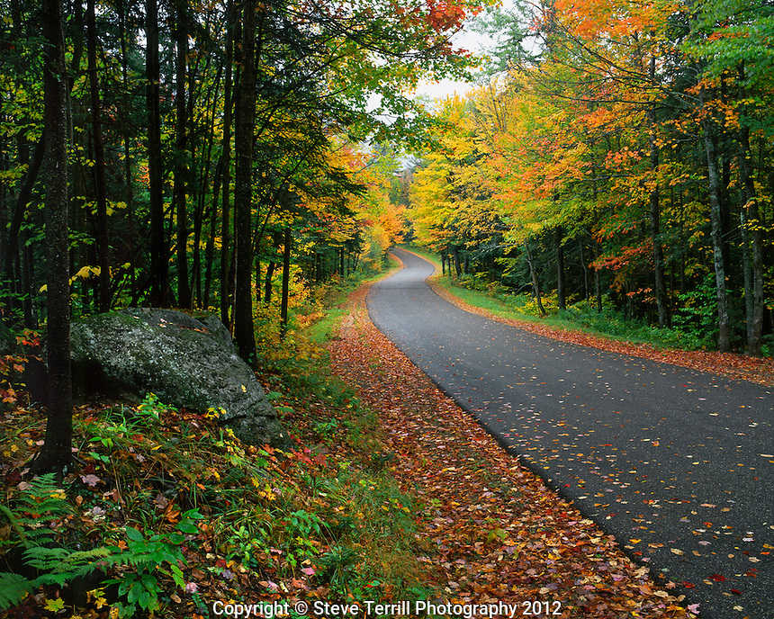 USA, New York, Autumn colored trees line road near Fourth Lake in the Adirondak Mountains
