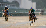 September 3, 2020: Shedaresthedevil exercises as horses prepare for the 2020 Kentucky Derby and Kentucky Oaks at Churchill Downs in Louisville, Kentucky. The race is being run without fans due to the coronavirus pandemic that has gripped the world and nation for much of the year. Scott Serio/Eclipse Sportswire/CSM
