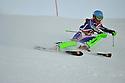 05/01/2013 bsa boys slalom run 1