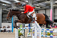 NZL-Maurice Beatson rides Central Park. Class 29: Fiber Fresh Horse 1.40m-1.45m 10K - FINAL. 2021 NZL-Easter Jumping Festival presented by McIntosh Global Equestrian and Equestrian Entries. NEC Taupo. Sunday 4 April. Copyright Photo: Libby Law Photography