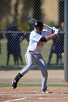 Chicago White Sox third baseman Trey Michalzcewski (22) during an Instructional League game against the Los Angeles Dodgers on October 8, 2013 at Camelback Ranch Complex in Glendale, Arizona.  (Mike Janes/Four Seam Images)