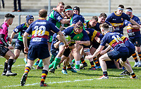 Saturday 13th April 2019 | Ballynahinch 4 vs Banbridge 3<br /> <br /> Philip Broome during the Crawford Cup final between Ballynahinch and Banbridge at Kingspan Stadium, Ravenhill Park, Belfast, Northern Ireland.  Photo by John Dickson / DICKSONDIGITAL