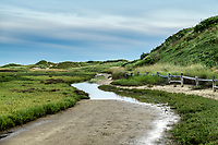 Dune path leading to Fisher Beach, Truro, Cape Cod, Massachusetts, USA