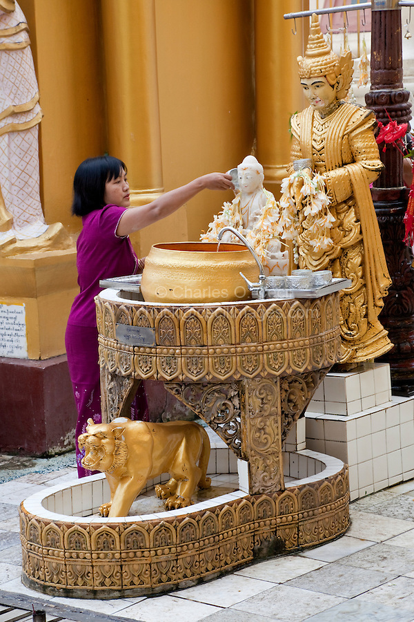 Myanmar, Burma.  Shwedagon Pagoda, Yangon, Rangoon.  In a Purifying Ritual, Woman Pours Water over a Buddha Covered with Garlands of Flowers.  A nat, a Buddhist spirit worshiped in Myanmar, stands behind the Buddha.