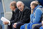 Spain's coach Vicente del Bosque during friendly match. June 1,2016.(ALTERPHOTOS/Acero)