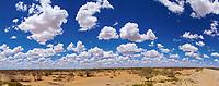 Cumulanten in der Wüste: NAMIBIA, AFRIKA, 02.01.2019: Cumulanten in der Wüste Kalahari