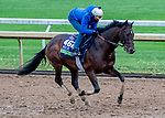 October 30, 2020: Raging Bull, trained by trainer Chad C. Brown, exercises in preparation for the Breeders' Cup Mile at Keeneland Racetrack in Lexington, Kentucky on October 30, 2020. Scott Serio/Eclipse Sportswire/Breeders Cup/CSM