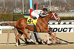 April 5, 2014: My Miss Sophia with Javier Castellano wins the Grade 2 Gazelle Stakes for 3-year old fillies, going 1 1/8 mile at Aqueduct Racetrack.  Trainer: Todd Pletcher. Owner: Richard Greeley. Sue Kawczynski/ESW/CSM