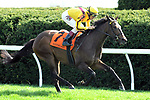 LEXINGTON, KY - APRIL 15: Lady Aurelia wins the 21st running of the Giant's Causeway $100,000 for owners Stonestreet Stable, George Bolton and Peter Leidel, trainer Wesley Ward and jockey John Velazquez.  April 15, 2017