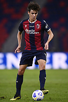 Aaron Hickey <br /> during the Serie A football match between Bologna FC and Parma Calcio 1913 at stadio Renato Dall Ara in Bologna (Italy), September 28th, 2020. Photo Image Sport / Insidefoto