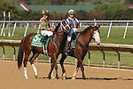 July 11, 2015: Lovely Maria, Kerwin Clark up, in the post parade before the Delaware Oaks. Calamity Kate, Edgar Prado up, wins the Grade III Delaware Oaks, one and one sixteenth miles for 3 year old fillies at Delaware Park in Stanton DE. Trainer is Kelly Breen. Joan Fairman Kanes/ESW/CSM