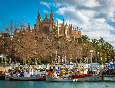 Spanien, Mallorca, Palma de Mallorca: Fischerboote vor der Kathedrale La Seu | Spain, Mallorca, Palma de Mallorca: fishing boats and Cathedral La Seu