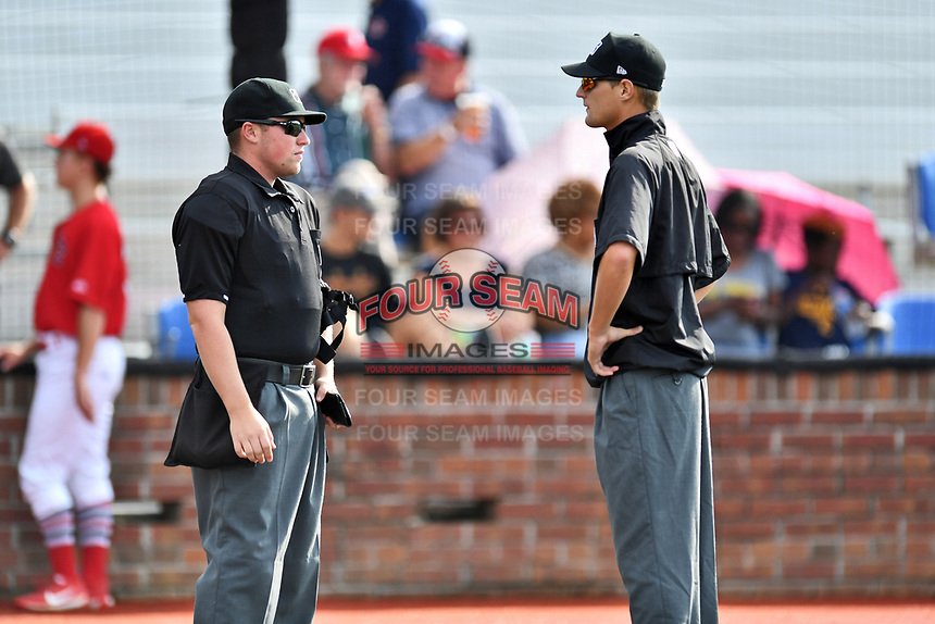 Home plate umpire Tyler Thurmond and first base umpire Justin Whiddon before a game between the Danville Braves and the Johnson City Cardinals at TVA Credit Union Ballpark on July 23, 2017 in Johnson City, Tennessee. The Cardinals defeated the Braves 8-5. (Tony Farlow/Four Seam Images)