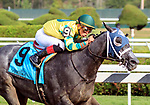Picco Uno (no. 9) wins the Union Ave Stakes on  August 17 at Saratoga Race Course, Saratoga Springs, NY.  The winner, ridden by Irad Ortiz and trained by Jason Servis, took control at the head of the stretch to win by 2 1/2 lengths the 6 1/2 furlong race against 8 opponents.  (Bruce Dudek/Eclipse Sportswire)